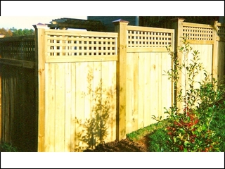 Square Lattice Top Fence